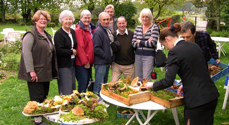 Burg - Mushroom group