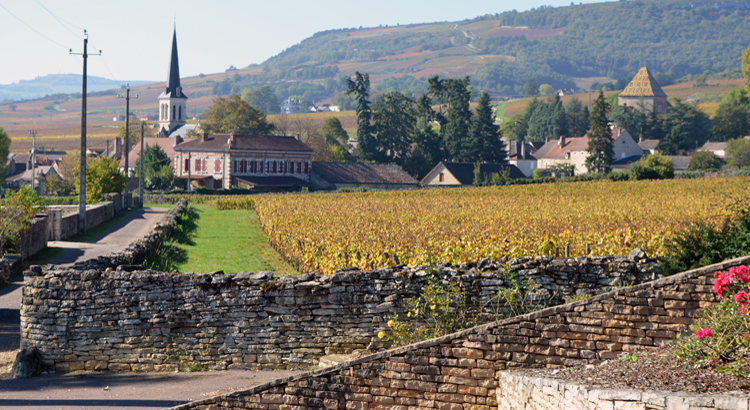 Burg-Vine & village