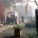 Burgundy-misty farmyard