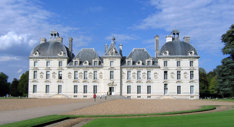 loire-chat Cheverny